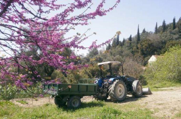 Πολυλειτουργικά αγροκτήματα: Όχημα ανάπτυξης της επιχειρηματικότητας της υπαίθρου
