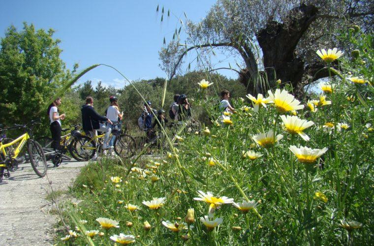 «Ποδηλάτες του δάσους» οι μαθητές του Αρσακείου Γυμνασίου Θεσσαλονίκης