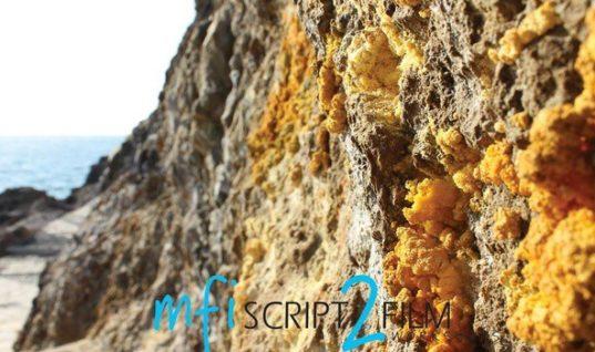 Ξεκίνησαν οι Εργασίες του   Μεσογειακού Ινστιτούτου  Κινηματογράφου στη Ρόδο