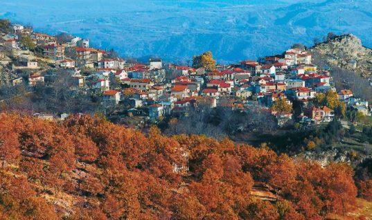 Γρεβενά: Η πόλη των μανιταριών, των χωριών και των δασών (pics)