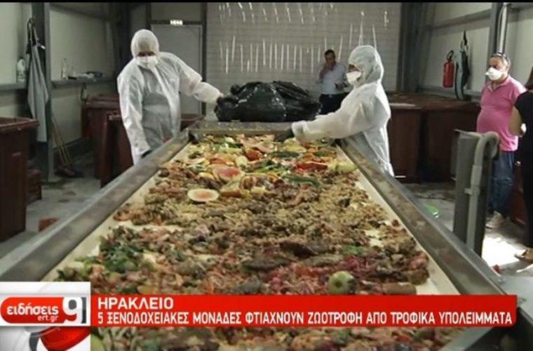 Πέντε ξενοδοχεία στο Ηράκλειο φτιάχνουν ξηρά τροφή για κατοικίδια από τροφικά υπολείμματα !(Βίντεο)