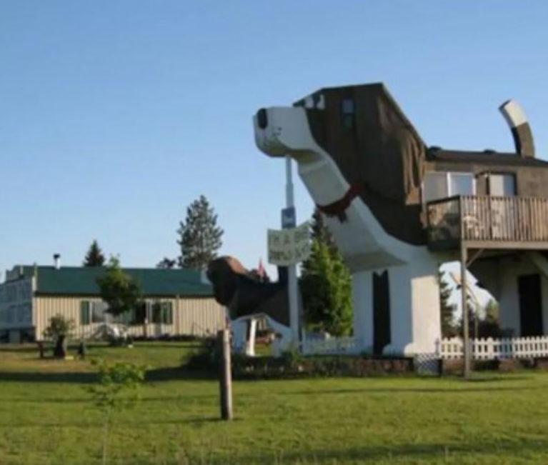 Το σπίτι-σκύλος: Το πιο περίεργο κατάλυμα Airbnb, διώροφο σε σχήμα ενός τεράστιου beagle