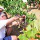 Οι επισκέπτες του Creta Maris μαθαίνουν να ζουν σαν Κρητικοί