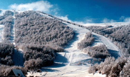 Δήμος Νάουσας: Στόχος η μακροχρόνια ενοικίαση του χιονοδρομικού κέντρου στα 3 – 5 Πηγάδια