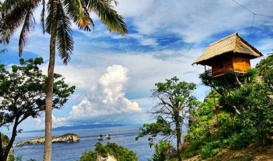 Airbnb: Το δεντρόσπιτο στην Ινδονησία που θα σε «ταξιδέψει» στα παιδικά σου όνειρα!